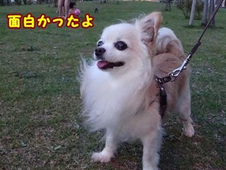 blog9883a.jpg
