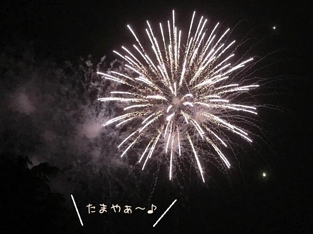 201708087.jpg