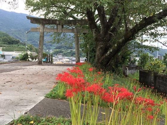 鹿背山神社の鳥居