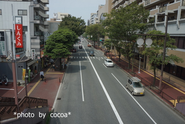 DSC00382 2017-09-19 12-39-04