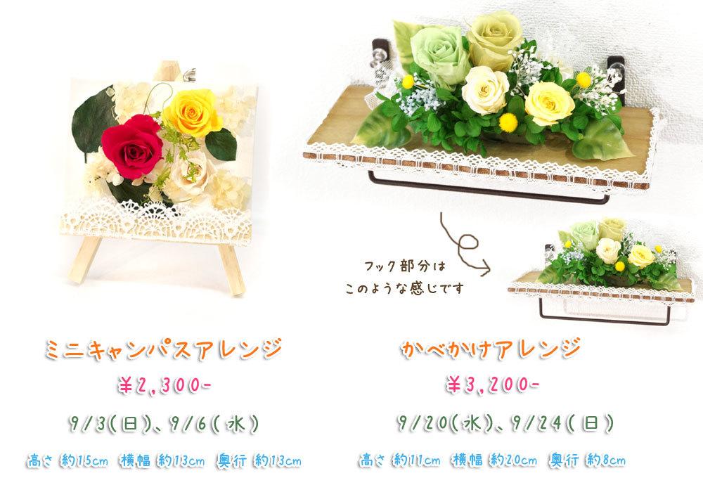 p_flower_201709.jpg