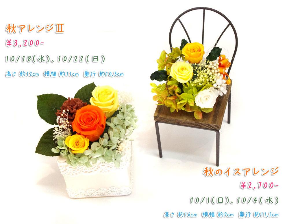 p_flower_201710.jpg