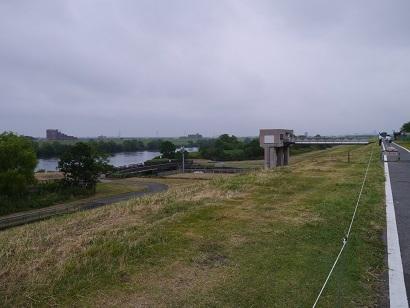 江戸川堤防(1)
