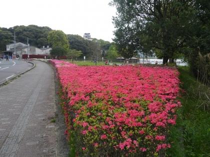 きたがた四季の丘公園(1)