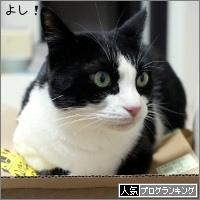 dai20170927_banner.jpg