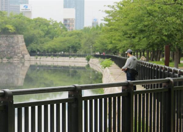 大阪城の堀「禁止の釣り横行」罰則は5万円以下の過料!の画像