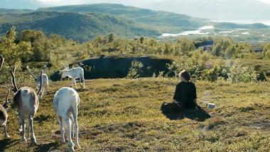 『サーミの血』 エレ・マリャたちサーミ人が住んでいる山の上の風景。トナカイの放牧がサーミ人の仕事だ。
