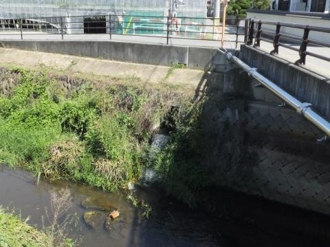 渋川に合流する小石和用水路