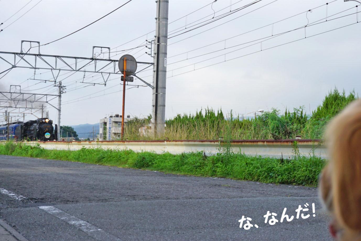 DSC08864.jpg
