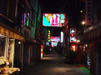 shinchichukagai7.jpg