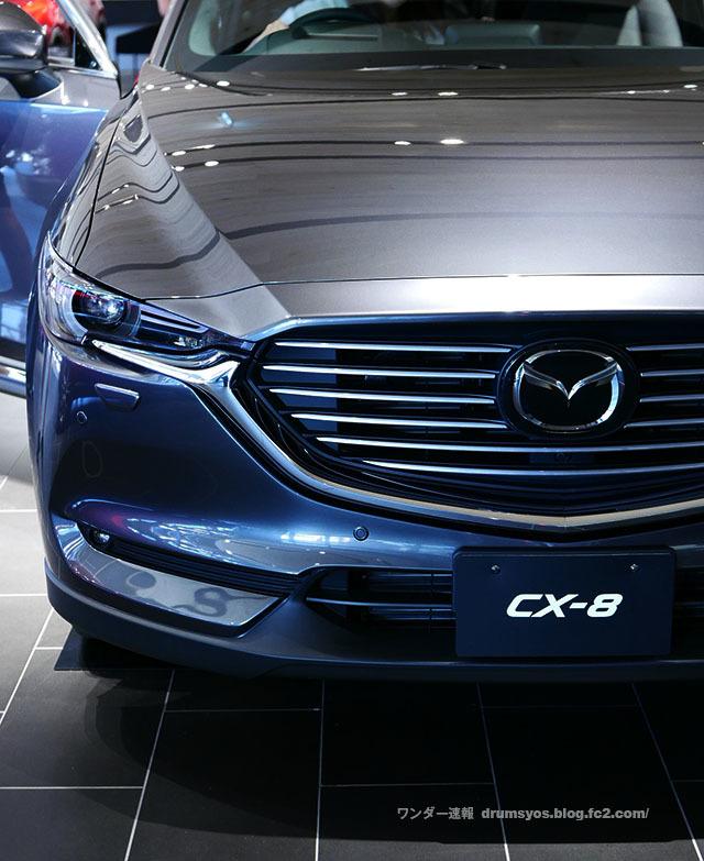 CX-8_32.jpg