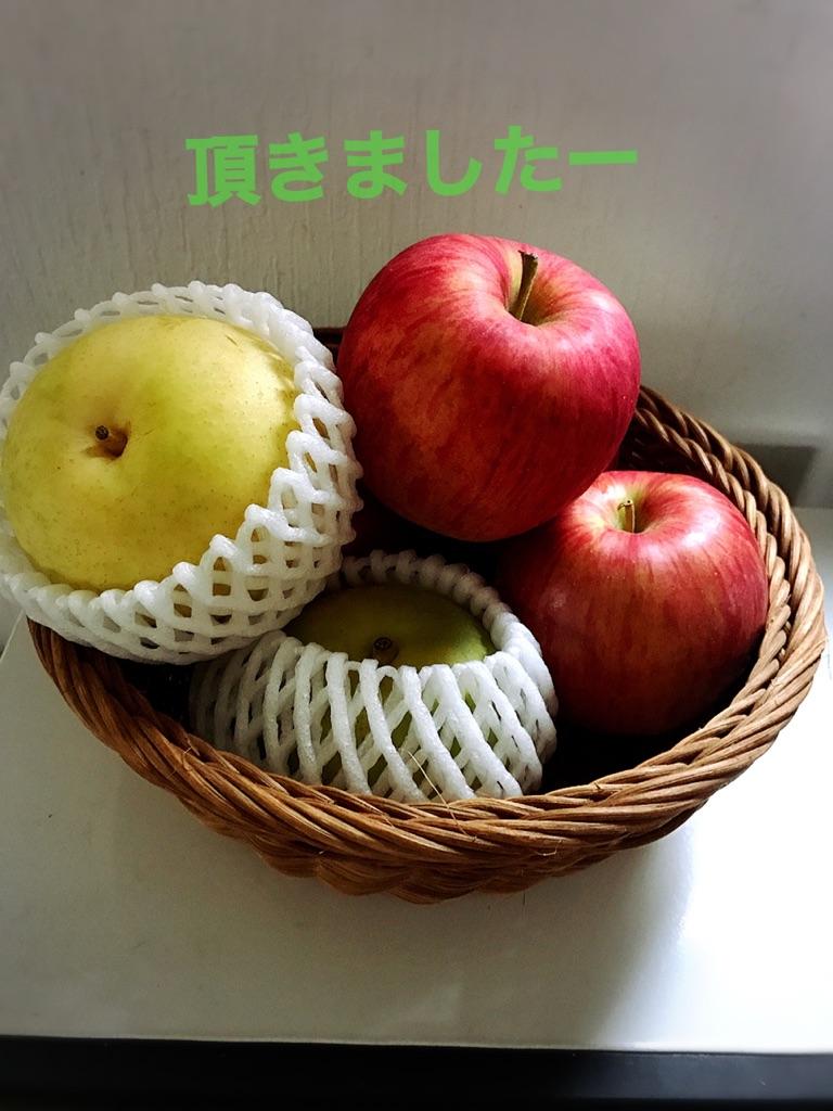 moblog_af860457.jpg