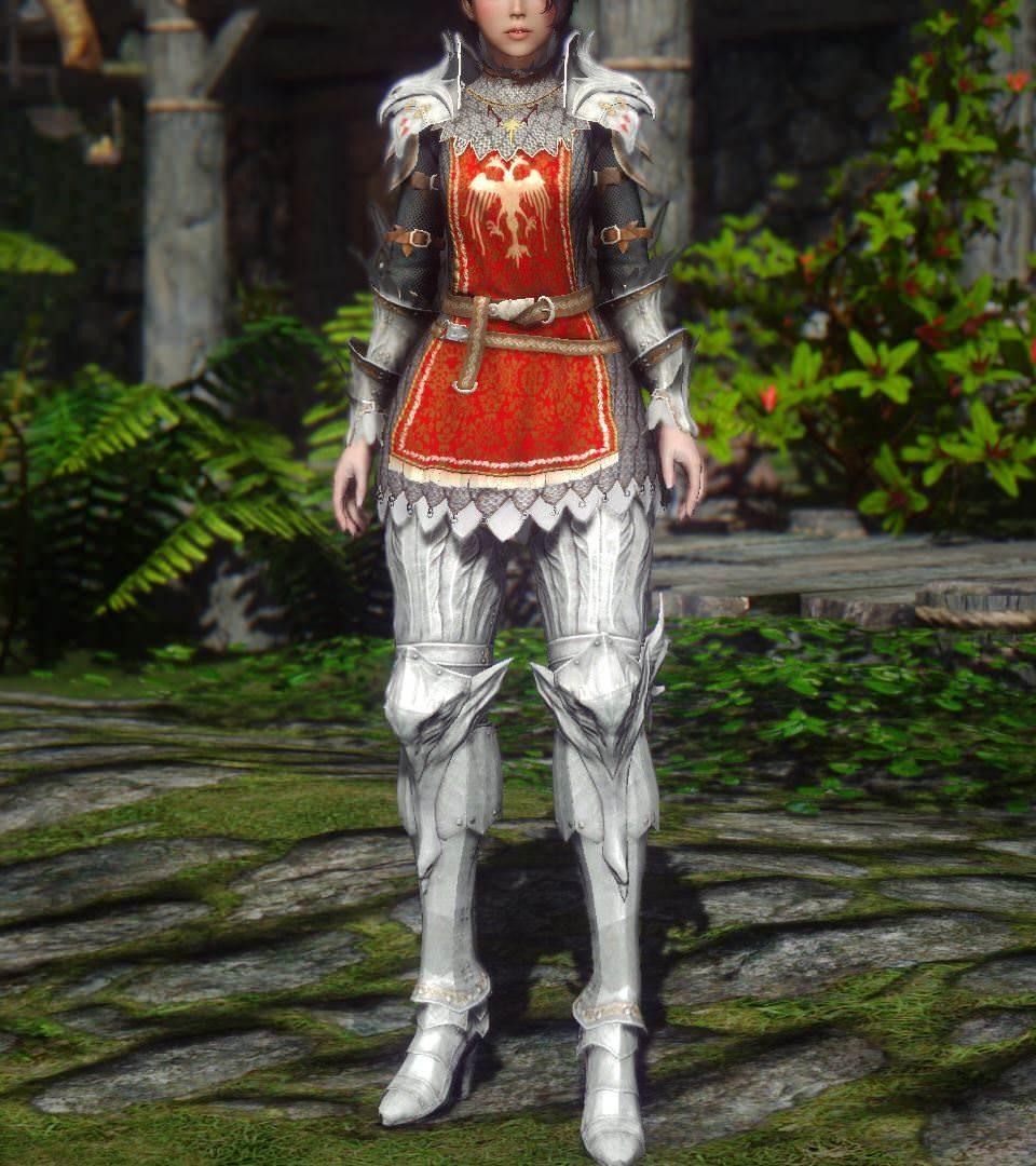 BDO_Valkyrie_Armor_2b.jpg