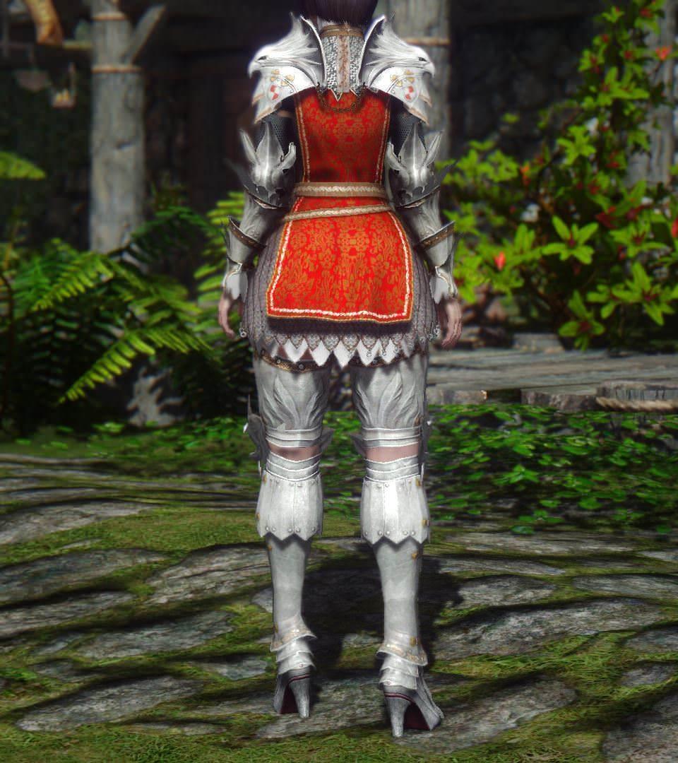 BDO_Valkyrie_Armor_3b.jpg