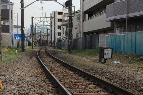 IMG_8876.jpg