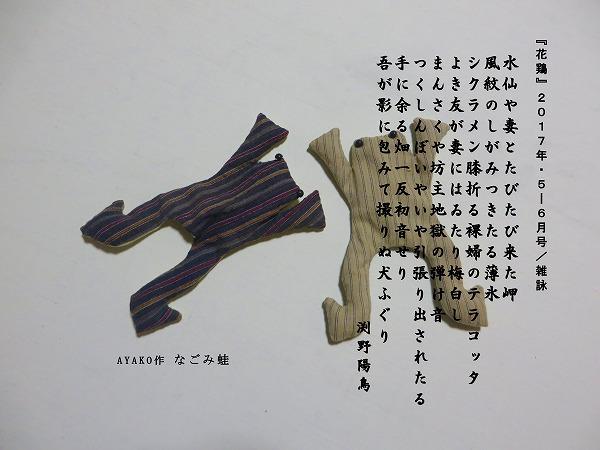 ku2886.jpg