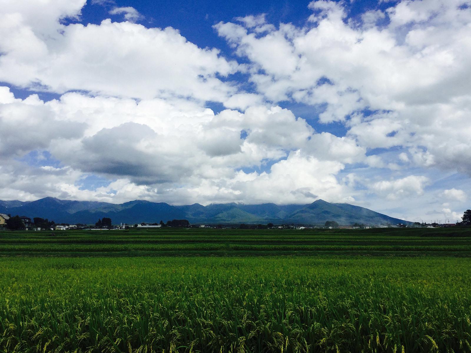 20170824_yatsugatake_1s.jpg