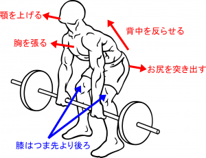Barbell-rear-delt-row-1point_20170716063548240.png