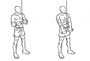Triceps-pushdown-1-horz_20170716062313b05.jpg
