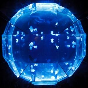 jellyfish-ball-11287755287fQ4F.jpg