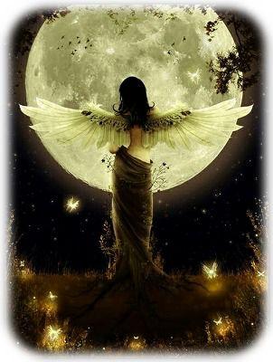 満月と羽をひろげた