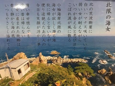 101海女POP