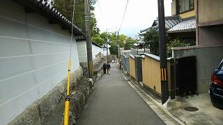 DSC_0030-1.jpg