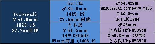 yg1620-18.jpg