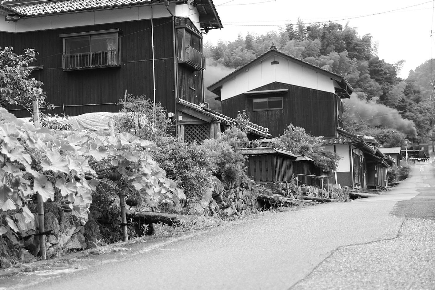 2017yamaguti45.jpg