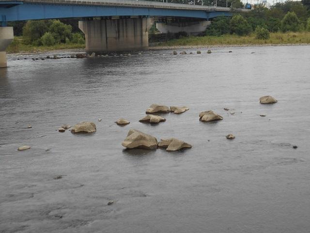 DSCN29760904大渡橋.jpg