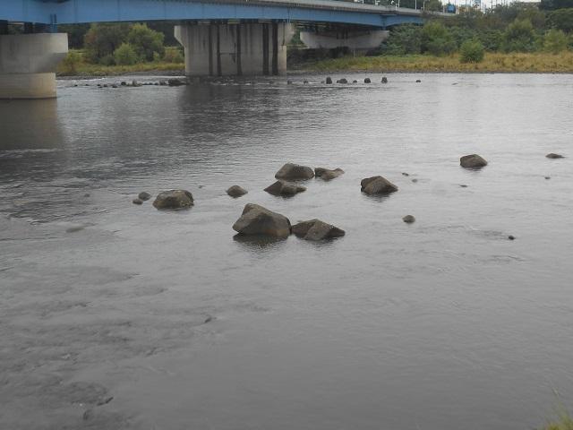 DSCN30740923大渡橋.jpg