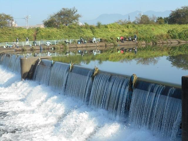 DSCN30870924木瀬地区ニジマス釣りの様子.jpg