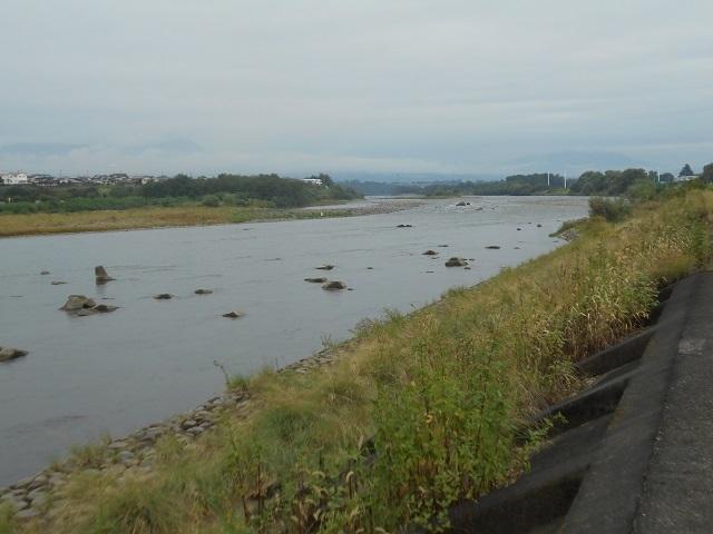DSCN31040928大渡橋左岸上流