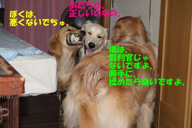 IMG_1491_20170713232940ff4.jpg