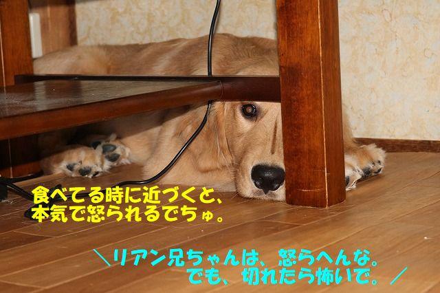 IMG_1637_201707142142029ed.jpg
