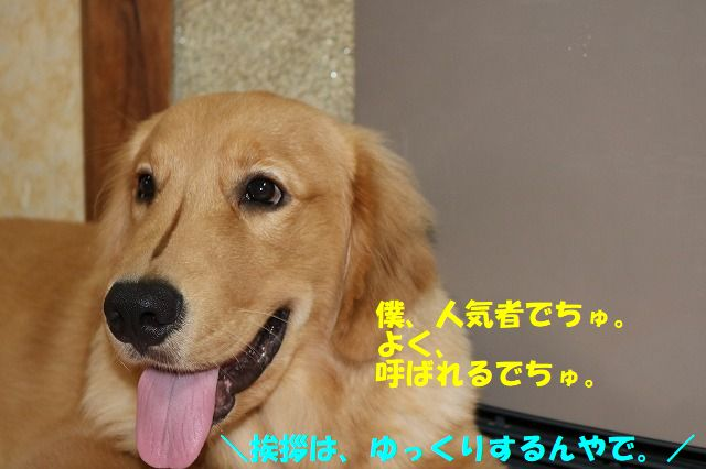 IMG_9575.jpg