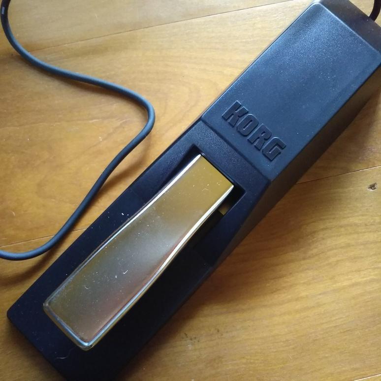 pedal2017090901.jpg