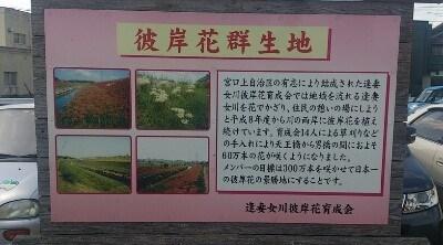 aizuma (3)