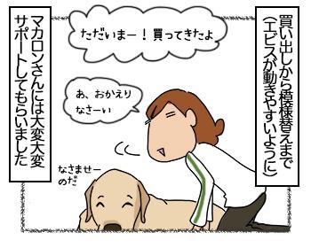 04082017_dog2mini.jpg