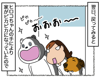 06092017_dog2.jpg