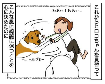 06092017_dog3.jpg