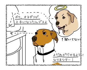 12092017_dog2.jpg