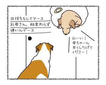 12092017_dog3.jpg