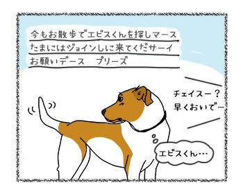 12092017_dog5.jpg