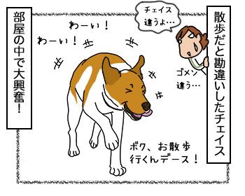 18092017_dog2.jpg