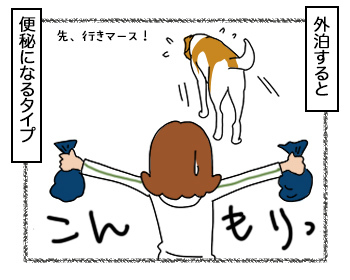 25092017_dog4.jpg