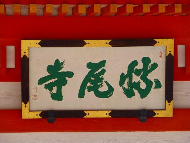 P1180935.jpg