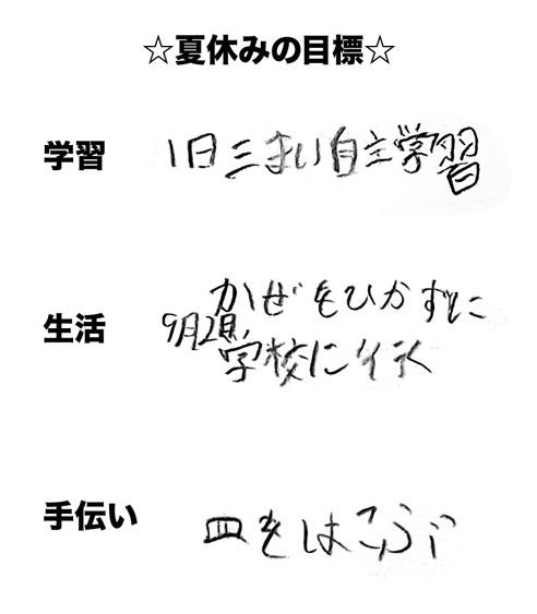 0803natuyasuminomokuhyou.jpg