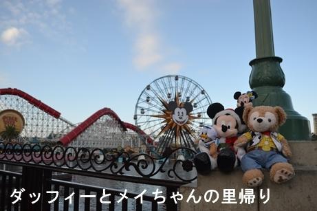 2019-2-9用 (1)