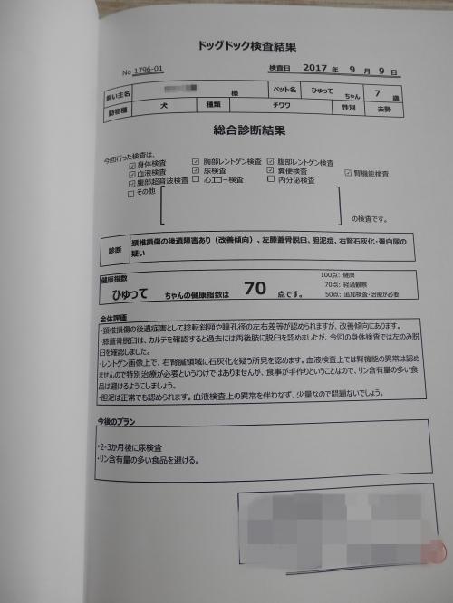 P9221553_convert_20170924225319.jpg